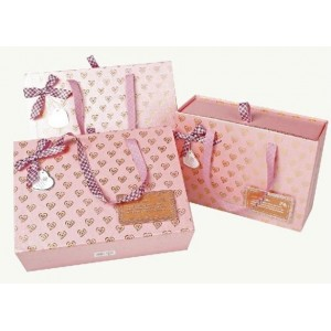 http://www.creation-craft.com/66-107-thickbox/cc509-printed-paper-bags.jpg