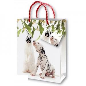 http://www.creation-craft.com/75-116-thickbox/cc501-paper-bags.jpg